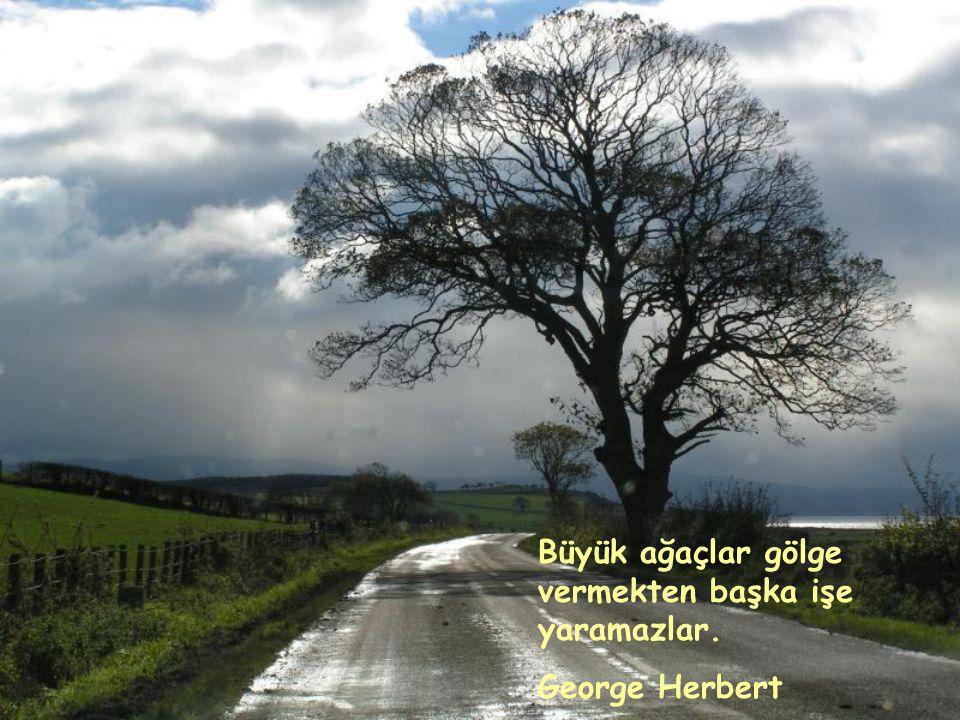 Kişioğlu da ağaca benzer, ne denli yükseğe ve ışığa çıkmak isterse, o denli kök salar yere, aşağılara, karanlığa, deliliğe, kötülüğe.