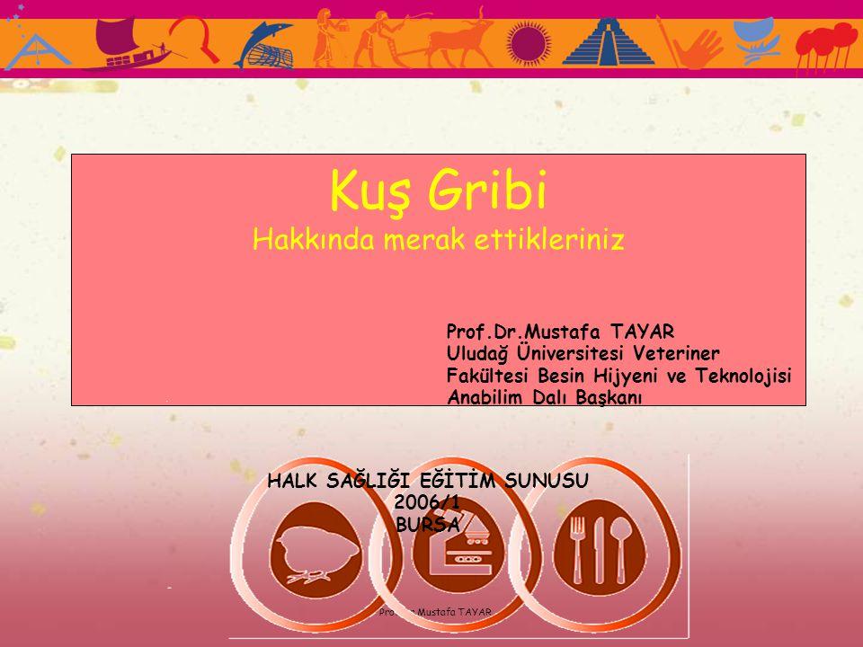 Prof.Dr.Mustafa TAYAR Kuş Gribi Hakkında merak ettikleriniz Prof.Dr.Mustafa TAYAR Uludağ Üniversitesi Veteriner Fakültesi Besin Hijyeni ve Teknolojisi