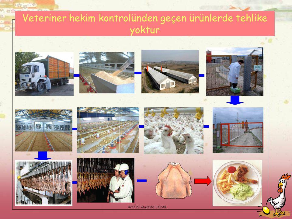 Prof.Dr.Mustafa TAYAR Veteriner hekim kontrolünden geçen ürünlerde tehlike yoktur