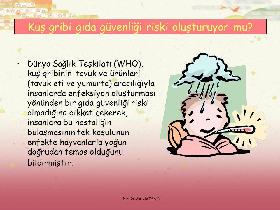 Prof.Dr.Mustafa TAYAR •Dünya Sağlık Teşkilatı (WHO), kuş gribinin tavuk ve ürünleri (tavuk eti ve yumurta) aracılığıyla insanlarda enfeksiyon oluşturm