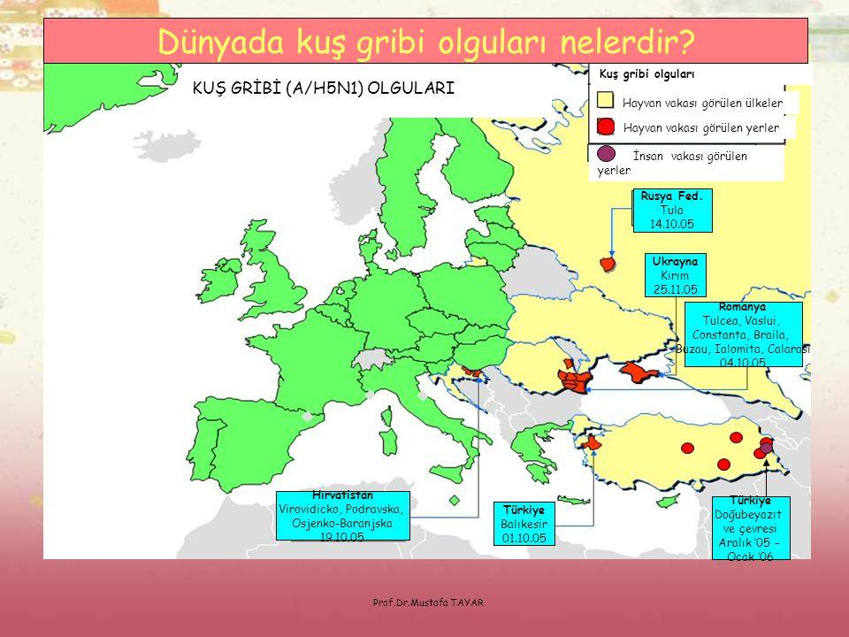 Prof.Dr.Mustafa TAYAR Hayvan vakası görülen ülkeler Kuş gribi olguları Hayvan vakası görülen yerler İnsan vakası görülen yerler KUŞ GRİBİ (A/H5N1) OLG