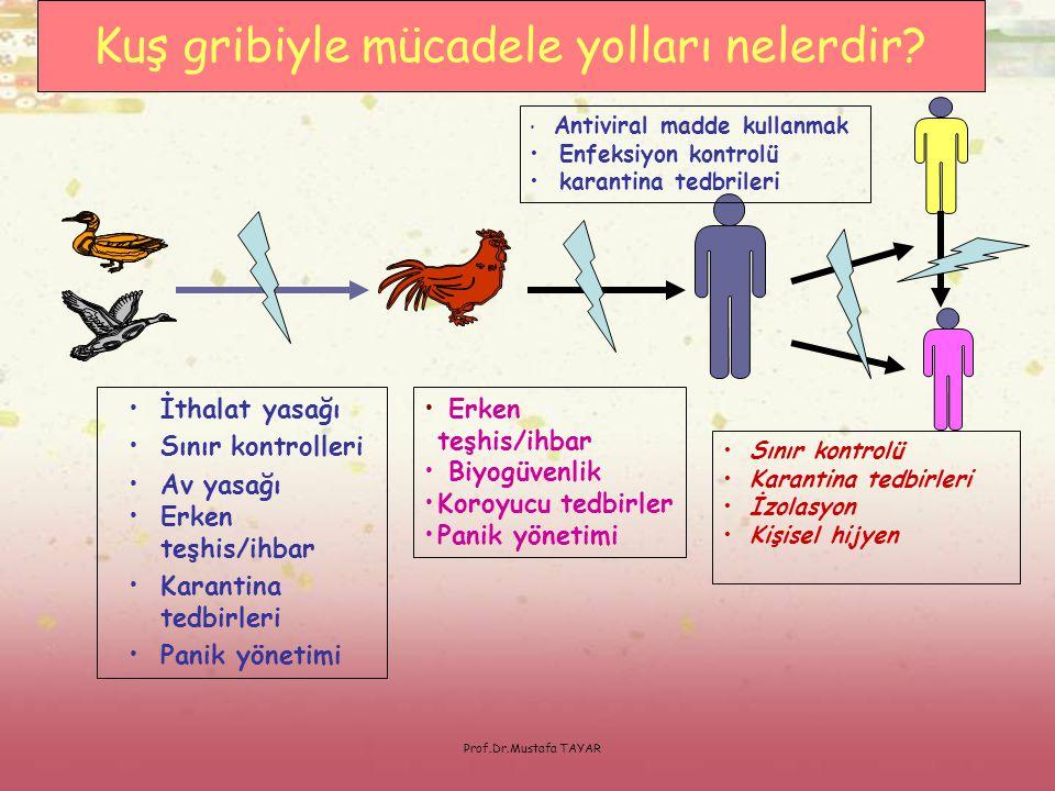 Prof.Dr.Mustafa TAYAR •İthalat yasağı •Sınır kontrolleri •Av yasağı •Erken teşhis/ihbar •Karantina tedbirleri •Panik yönetimi • Erken teşhis/ihbar • B