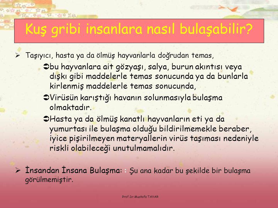 Prof.Dr.Mustafa TAYAR SONSÖZ Bilgi paylaştıkça değerlidir.