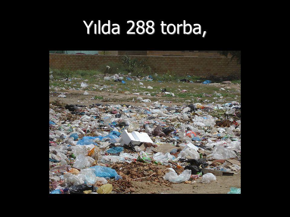 Yılda 288 torba,