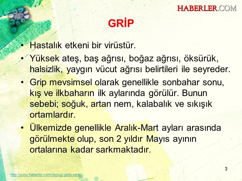 44 http://www.haberler.com/domuz-giribi-nedir/ www.haberler.com