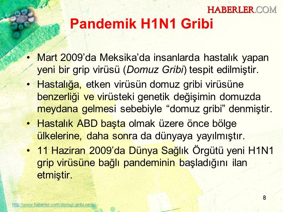 8 Pandemik H1N1 Gribi •Mart 2009'da Meksika'da insanlarda hastalık yapan yeni bir grip virüsü (Domuz Gribi) tespit edilmiştir. •Hastalığa, etken virüs
