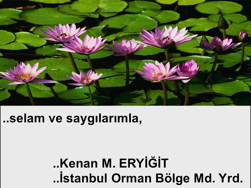 ..selam ve saygılarımla,..Kenan M. ERYİĞİT..İstanbul Orman Bölge Md. Yrd.