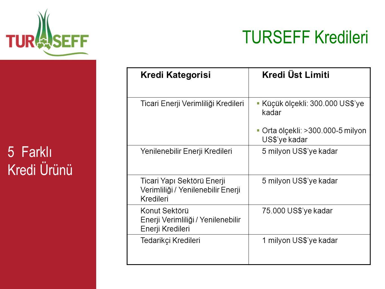 5 Farklı Kredi Ürünü TURSEFF Kredileri Kredi KategorisiKredi Üst Limiti Ticari Enerji Verimliliği Kredileri  Küçük ölçekli: 300.000 US$'ye kadar  Or