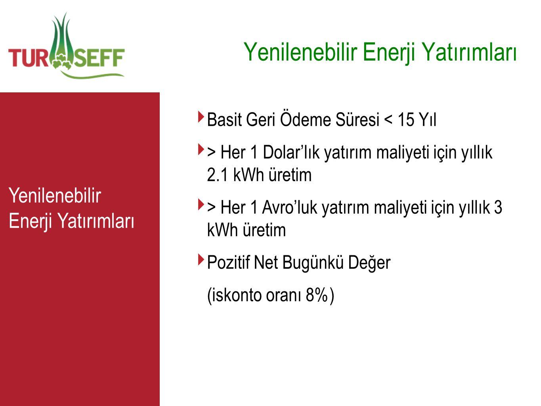 C ‣ Basit Geri Ödeme Süresi < 15 Yıl ‣ > Her 1 Dolar'lık yatırım maliyeti için yıllık 2.1 kWh üretim ‣ > Her 1 Avro'luk yatırım maliyeti için yıllık 3