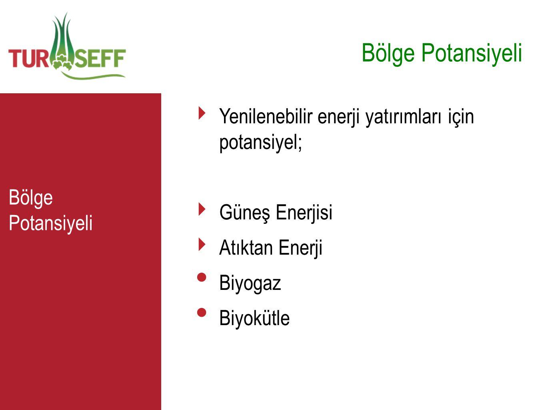 C Bölge Potansiyeli ‣ Yenilenebilir enerji yatırımları için potansiyel; ‣ Güneş Enerjisi ‣ Atıktan Enerji • Biyogaz • Biyokütle Bölge Potansiyeli