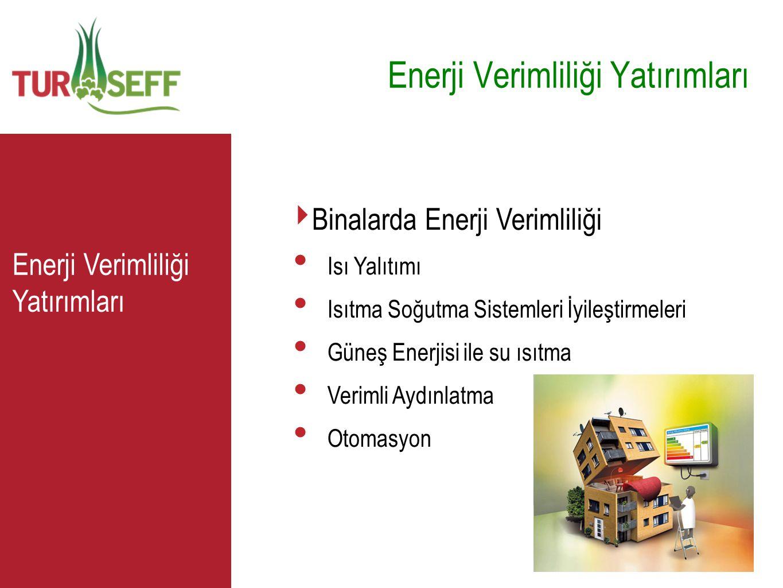 C Enerji Verimliliği Yatırımları ‣ Binalarda Enerji Verimliliği • Isı Yalıtımı • Isıtma Soğutma Sistemleri İyileştirmeleri • Güneş Enerjisi ile su ısı