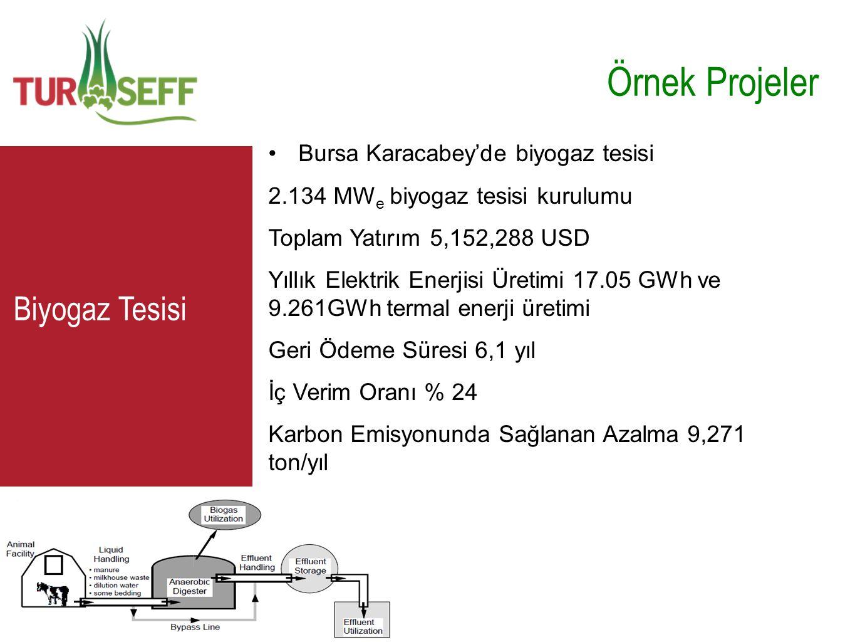 C Örnek Projeler •Bursa Karacabey'de biyogaz tesisi 2.134 MW e biyogaz tesisi kurulumu Toplam Yatırım 5,152,288 USD Yıllık Elektrik Enerjisi Üretimi 1