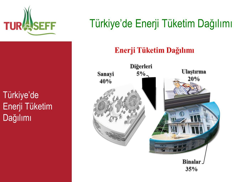 C Türkiye'de Enerji Tüketim Dağılımı