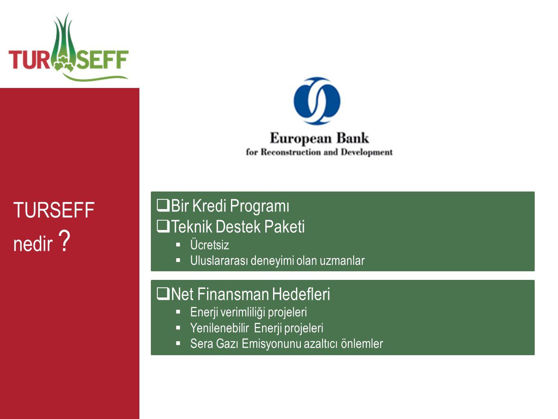 TURSEFF nedir ?  Bir Kredi Programı  Teknik Destek Paketi  Ücretsiz  Uluslararası deneyimi olan uzmanlar  Net Finansman Hedefleri  Enerji veriml