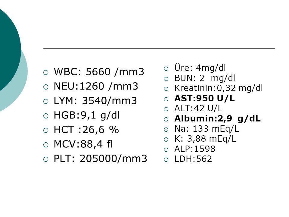  WBC: 5660 /mm3  NEU:1260 /mm3  LYM: 3540/mm3  HGB:9,1 g/dl  HCT :26,6 %  MCV:88,4 fl  PLT: 205000/mm3  Üre: 4mg/dl  BUN: 2 mg/dl  Kreatinin