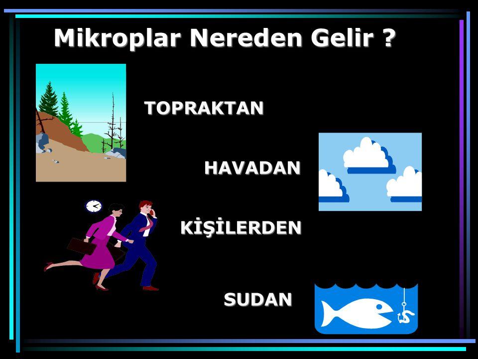 TOPRAKTAN HAVADAN KİŞİLERDEN SUDAN Mikroplar Nereden Gelir ?