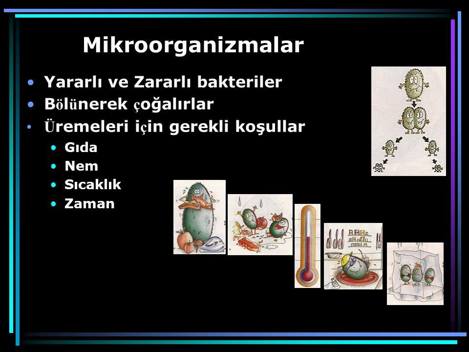 Mikroorganizmalar •Yararlı ve Zararlı bakteriler •B ö l ü nerek ç oğalırlar •Ü remeleri i ç in gerekli koşullar •Gıda •Nem •Sıcaklık •Zaman