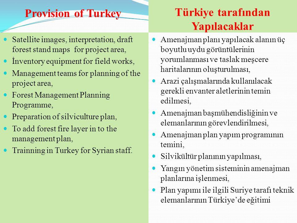 Türkiye tarafından Yapılacaklar  Amenajman planı yapılacak alanın üç boyutlu uydu görüntülerinin yorumlanması ve taslak meşcere haritalarının oluştur