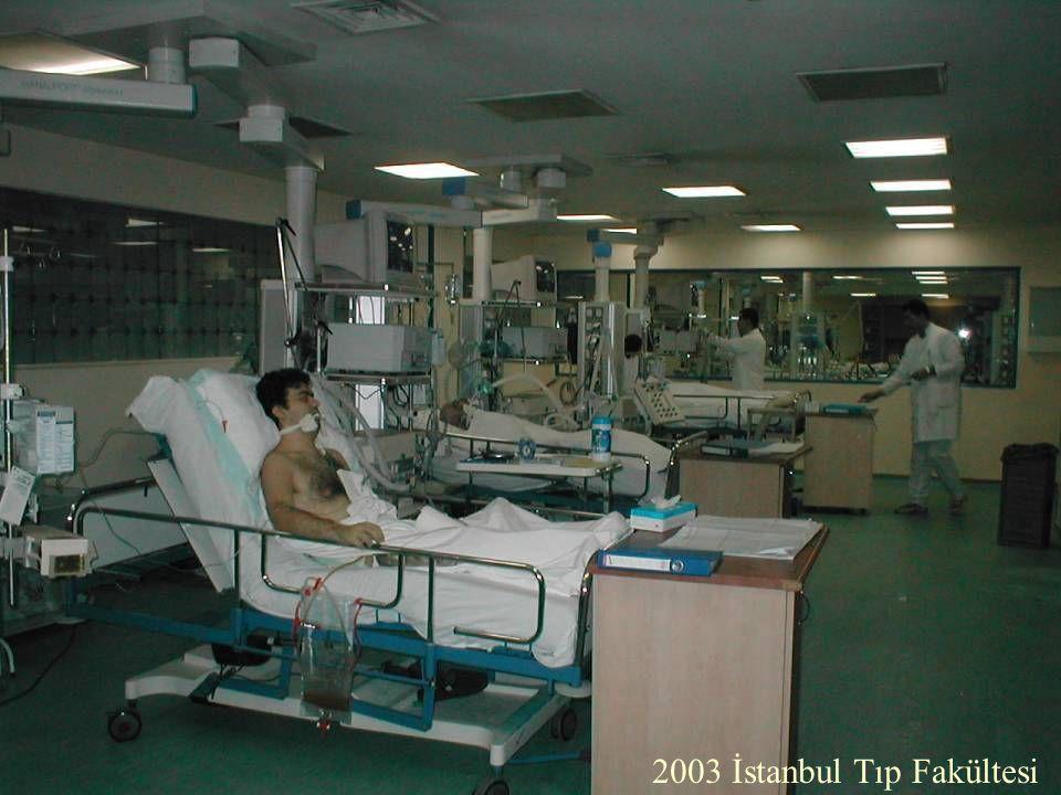 2003 İstanbul Tıp Fakültesi
