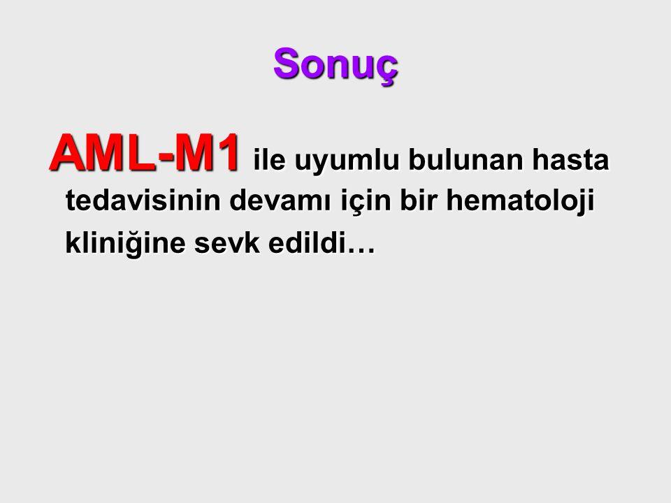 Sonuç AML-M1 ile uyumlu bulunan hasta tedavisinin devamı için bir hematoloji AML-M1 ile uyumlu bulunan hasta tedavisinin devamı için bir hematoloji kl