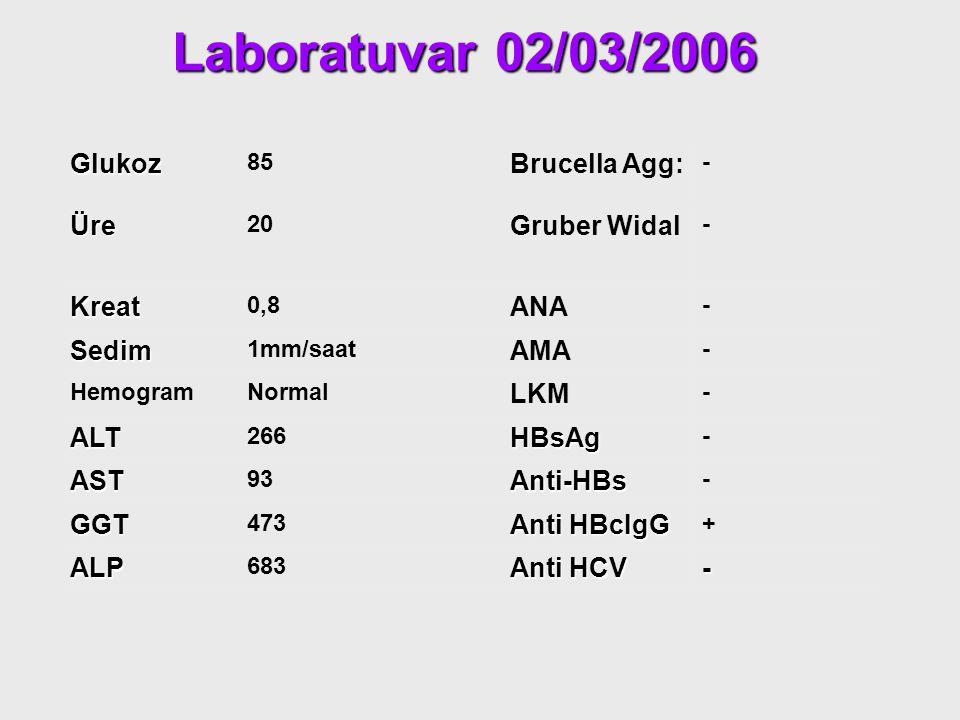 Laboratuvar 02/03/2006 Glukoz 85 Brucella Agg: - Üre 20 Gruber Widal - Kreat 0,8 ANA - Sedim 1mm/saat AMA - HemogramNormal LKM - ALT 266HBsAg - AST 93