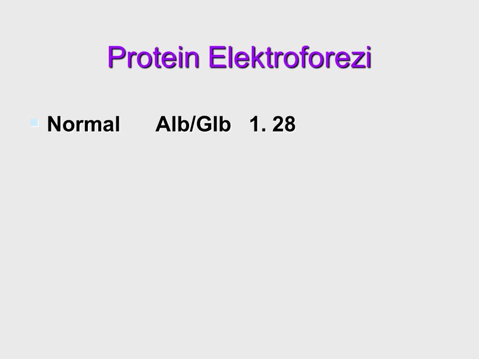 Protein Elektroforezi  Normal Alb/Glb 1. 28