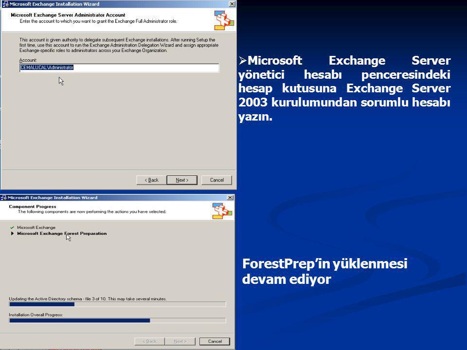  Microsoft Exchange Server yönetici hesabı penceresindeki hesap kutusuna Exchange Server 2003 kurulumundan sorumlu hesabı yazın.