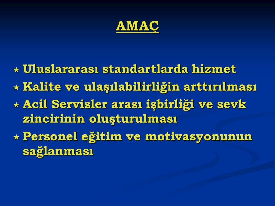 Ambulans ve özel sağlık aracı personeli.