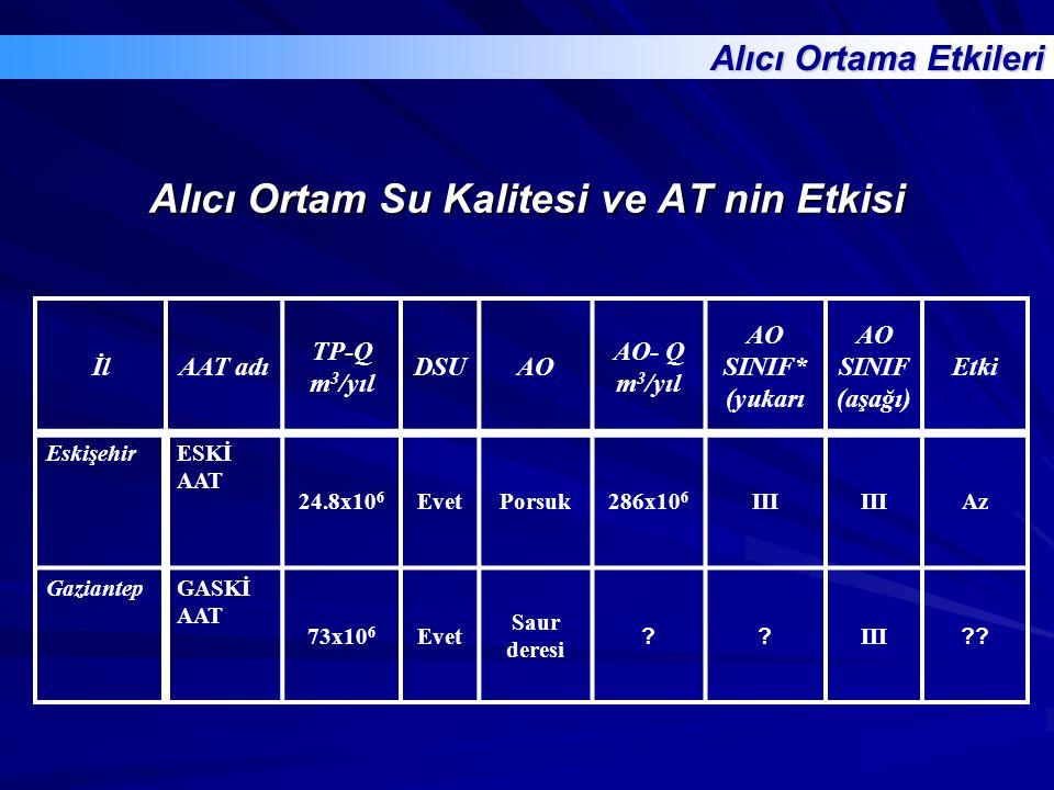 Alıcı Ortam Su Kalitesi ve AT nin Etkisi İlAAT adı TP-Q m 3 /yıl DSUAO AO- Q m 3 /yıl AO SINIF* (yukarı AO SINIF (aşağı) Etki EskişehirESKİ AAT 24.8x1