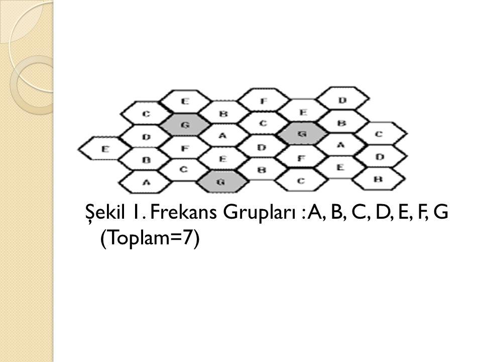  Her bir kayıtçıyı sırasıyla R1, R2, R3 olarak 19, 22 ve 23 bit uzunlu ğ unda geri beslemeli polinomlara da ğ ılmıştır.