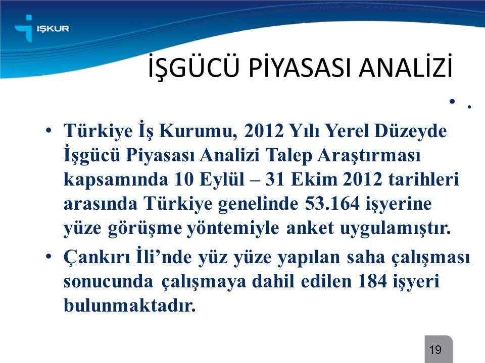 İŞGÜCÜ PİYASASI ANALİZİ •. • Türkiye İş Kurumu, 2012 Yılı Yerel Düzeyde İşgücü Piyasası Analizi Talep Araştırması kapsamında 10 Eylül – 31 Ekim 2012 t