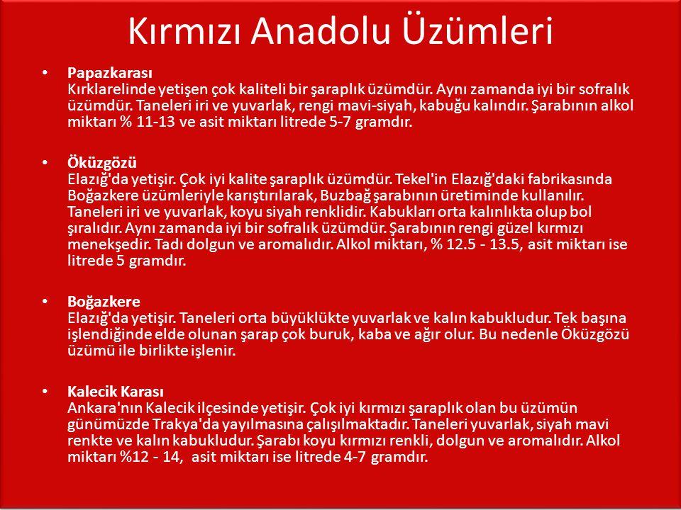 Beyaz Anadolu Üzümleri • Hasandede Ankara ilinin Keskin.Hasandede çevresinde bağların çoğunluğunu bu üzüm oluşturur.