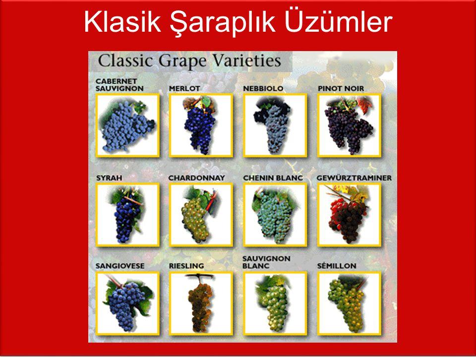 KIRMIZI Üzüm adı (artan kuvvette) ---- En iyi yetiştiği yer Gamay ---- Beaujolais, Fransa Pinot Noir ---- Burgundy, Fransa; Kaliforniya; Oregon; Champagne, Fransa Kalecik Karası ---- Kalecik, Ankara Öküzgözü ---- Elazığ, Diyarbakır Boğazkere ---- Elazığ, Diyarbakır Tempranillo ---- Rioja, İspanya Sangiovese ---- Tuscany, İtalya Merlot ---- Bordeaux, Fransa Kaliforniya; Washington State Zinfandel ---- Kaliforniya Cabernet Sauvignon ---- Bordeaux, Fransa Kaliforniya; Şili Nebbiolo ---- Piedmont, İtalya Syrah / Shiraz ---- Rhone, Fransa; Avustralya