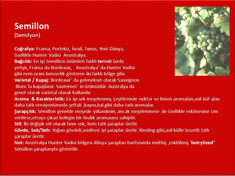 Semillon (Semilyon) Coğrafya: Fransa, Portekiz, İsrail, Tunus, Yeni Dünya, özellikle Hunter Vadisi Avustralya. Bağcılık: En iyi Semillion üzümleri far