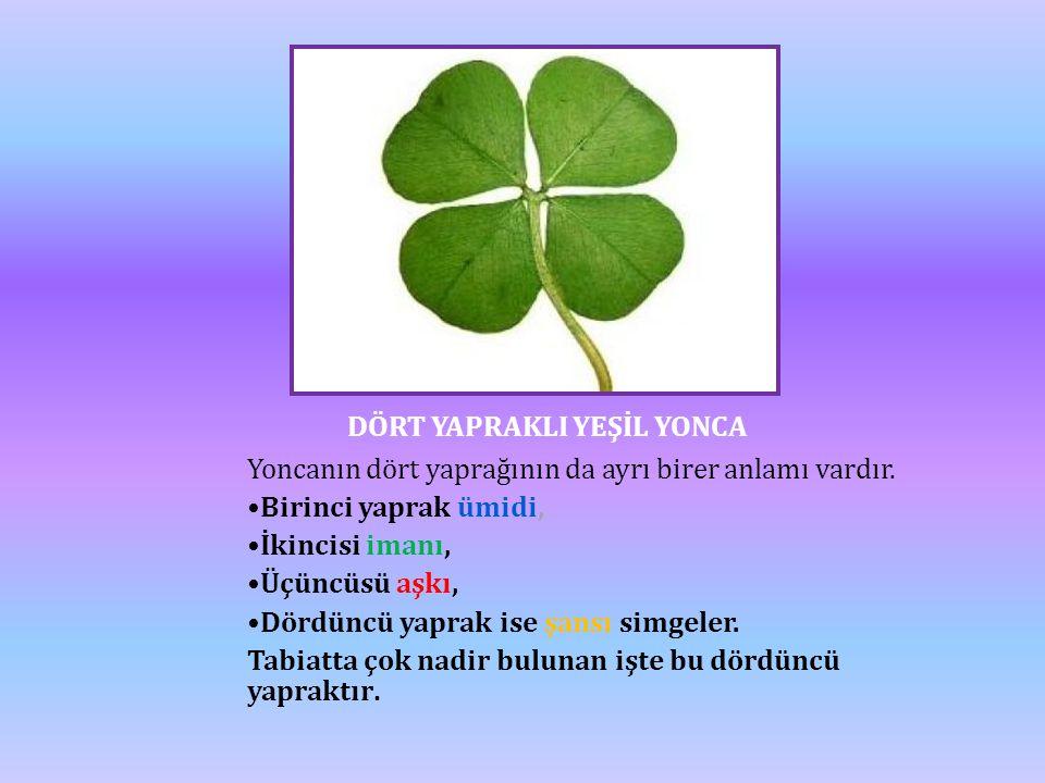 DÖRT YAPRAKLI YEŞİL YONCA Yoncanın dört yaprağının da ayrı birer anlamı vardır. •Birinci yaprak ümidi, •İkincisi imanı, •Üçüncüsü aşkı, •Dördüncü yapr