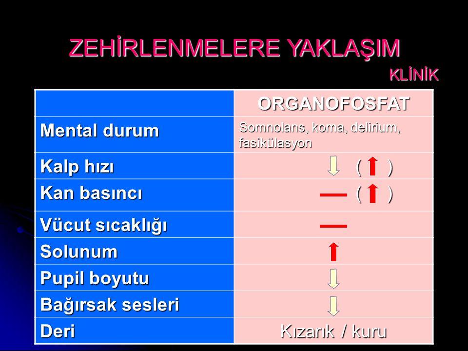 ORGANOFOSFAT Mental durum Somnolans, koma, delirium, fasikülasyon Kalp hızı ( ) ( ) Kan basıncı ( ) ( ) Vücut sıcaklığı Solunum Pupil boyutu Bağırsak sesleri Deri Kızarık / kuru ZEHİRLENMELERE YAKLAŞIM KLİNİK KLİNİK