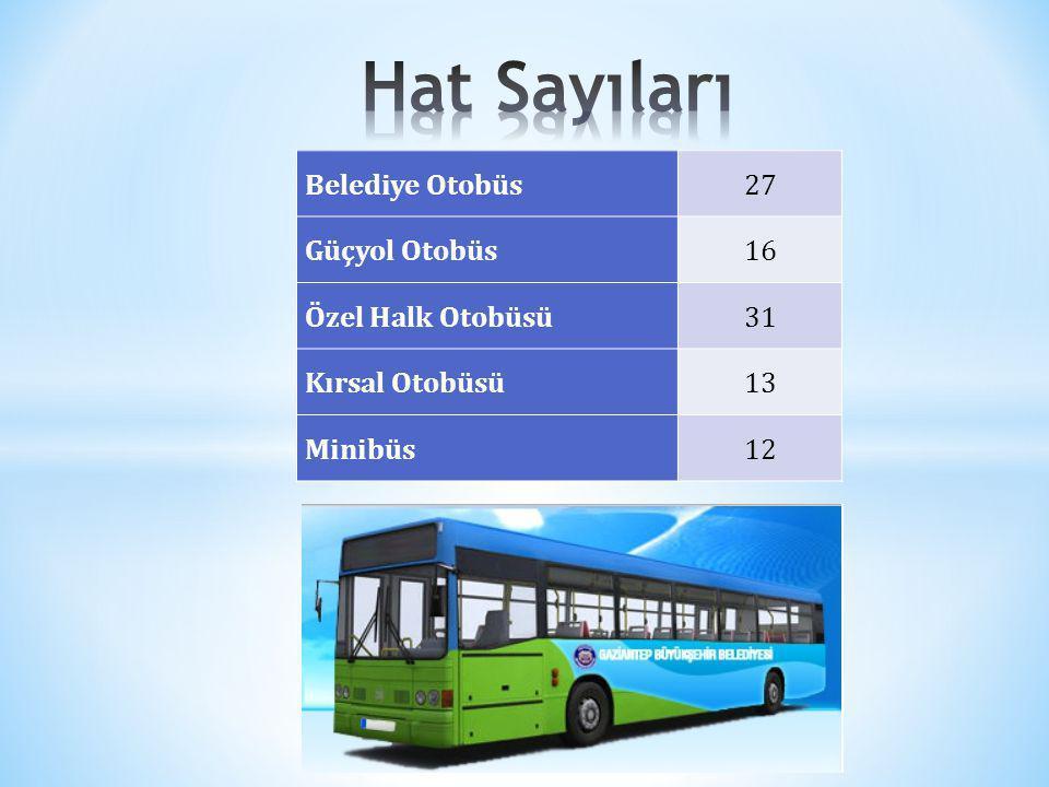 Belediye Otobüs27 Güçyol Otobüs16 Özel Halk Otobüsü31 Kırsal Otobüsü13 Minibüs12