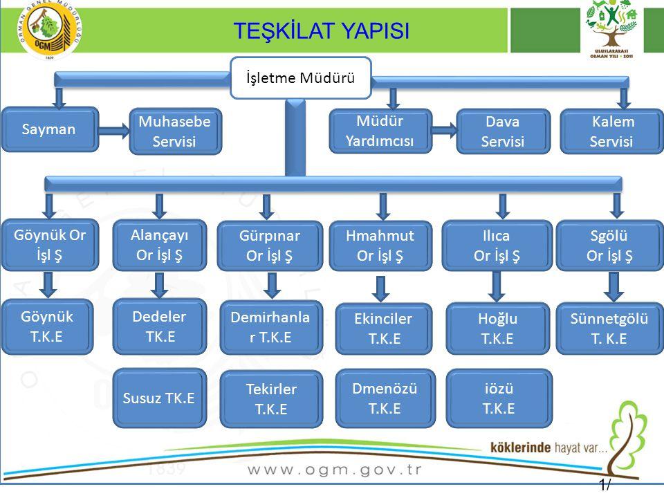 SİLVİKÜLTÜR Kültür Bakımı Program 142.0Ha Gerçekleşme142.0 Ha.