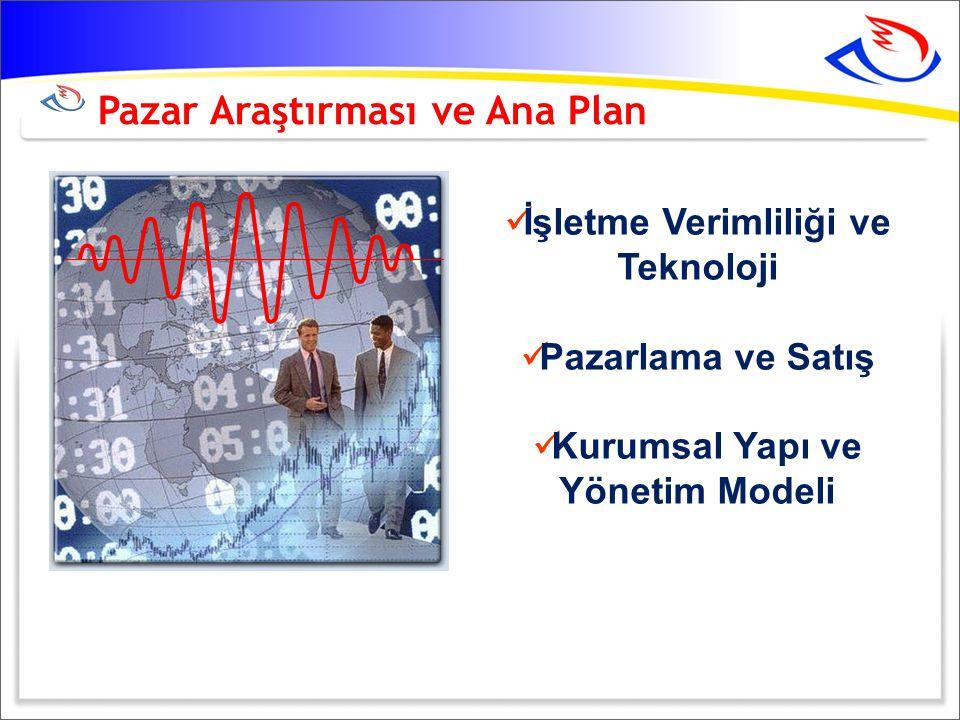 Pazar Araştırması ve Ana Plan  İşletme Verimliliği ve Teknoloji  Pazarlama ve Satış  Kurumsal Yapı ve Yönetim Modeli