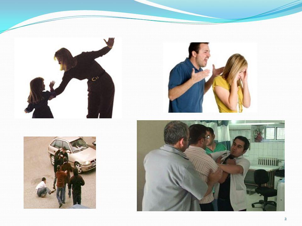 2012-2013 Beyaz Kod Deneyimler  Toplam 22 başvuru  10 sözel şiddet, mağdurlar şikayetçi olmadı  12 sözel ve fiziksel şiddet, mağdur şikayetçi oldu  4 Fiziksel şiddet  8 Sözel şiddet  1 vakada dava süreci başladı 23