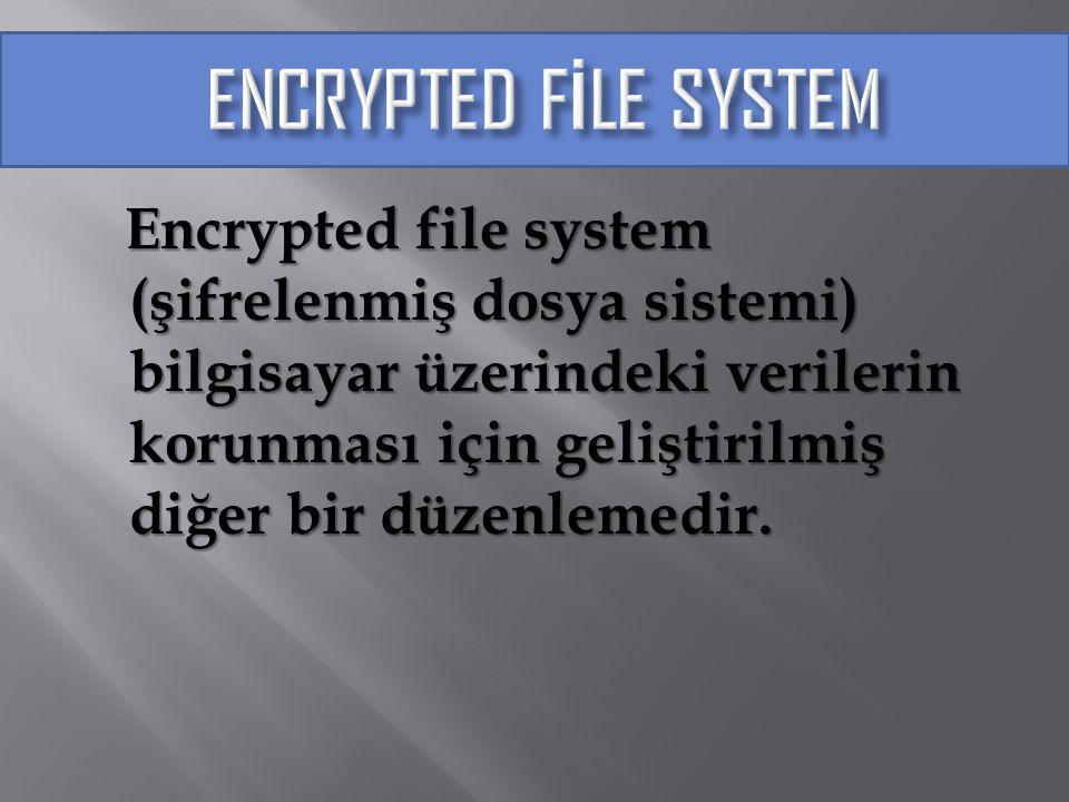 Encrypted file system (şifrelenmiş dosya sistemi) bilgisayar üzerindeki verilerin korunması için geliştirilmiş diğer bir düzenlemedir. Encrypted file