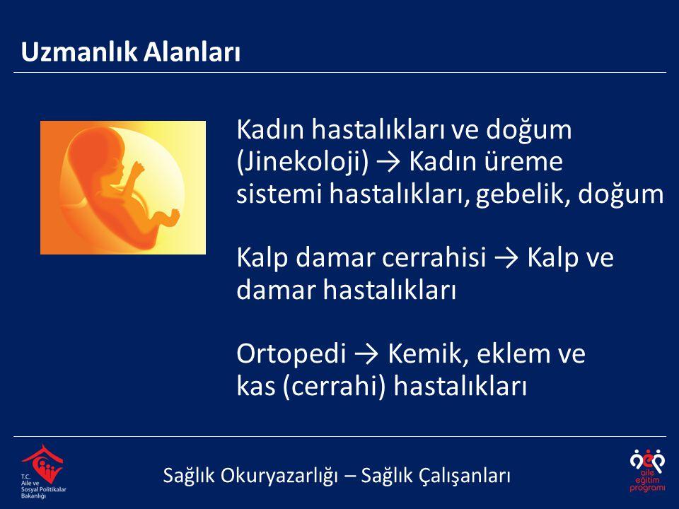 Kadın hastalıkları ve doğum (Jinekoloji) → Kadın üreme sistemi hastalıkları, gebelik, doğum Kalp damar cerrahisi → Kalp ve damar hastalıkları Ortopedi