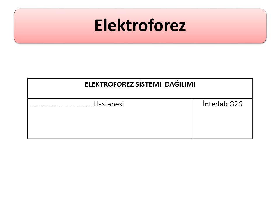 Elektroforez ELEKTROFOREZ SİSTEMİ DAĞILIMI ……………………………..Hastanesiİnterlab G26