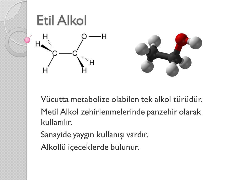 Etil Alkol Vücutta metabolize olabilen tek alkol türüdür. Metil Alkol zehirlenmelerinde panzehir olarak kullanılır. Sanayide yaygın kullanışı vardır.