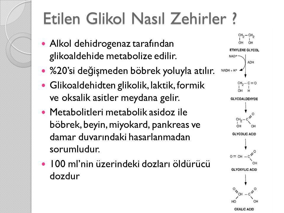 Etilen Glikol Nasıl Zehirler ?  Alkol dehidrogenaz tarafından glikoaldehide metabolize edilir.  %20'si de ğ işmeden böbrek yoluyla atılır.  Glikoal