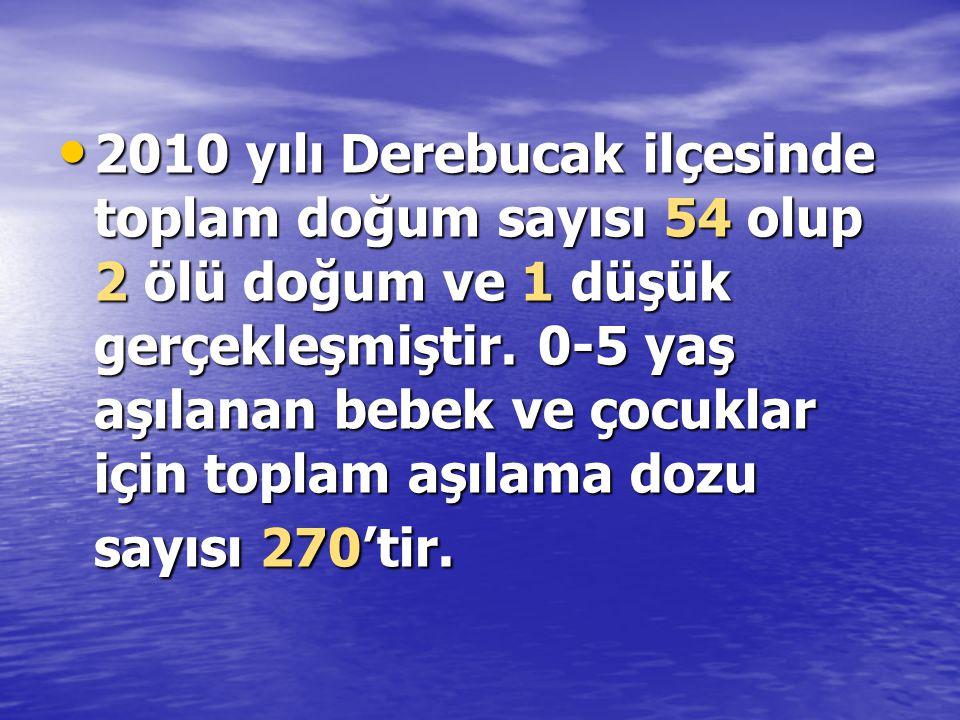 • 2010 yılı Derebucak ilçesinde toplam doğum sayısı 54 olup 2 ölü doğum ve 1 düşük gerçekleşmiştir.