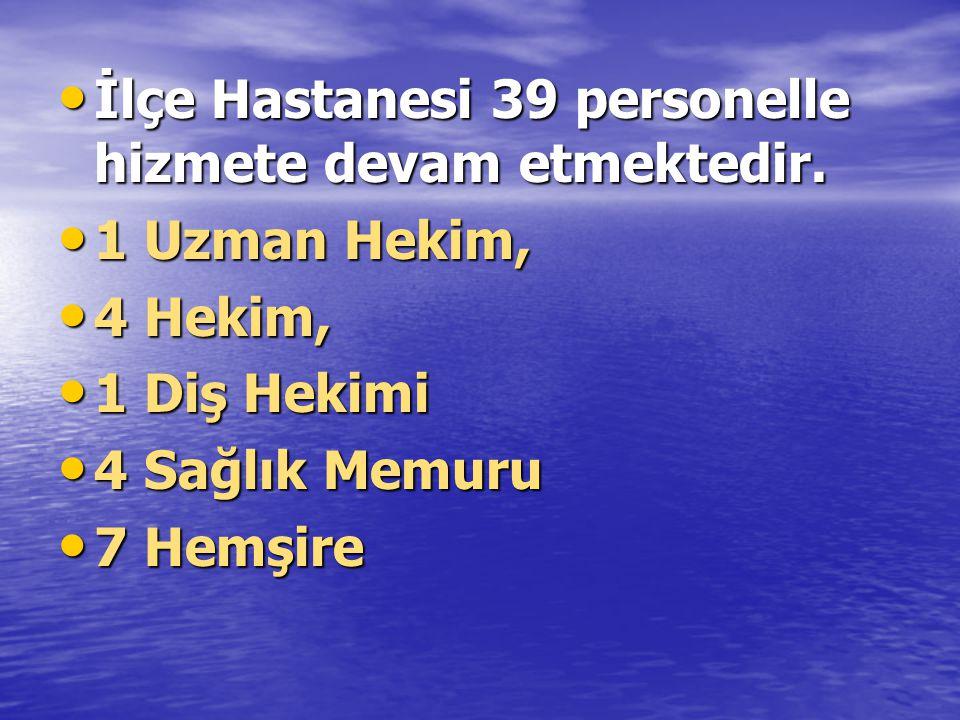 • İlçe Hastanesi 39 personelle hizmete devam etmektedir.