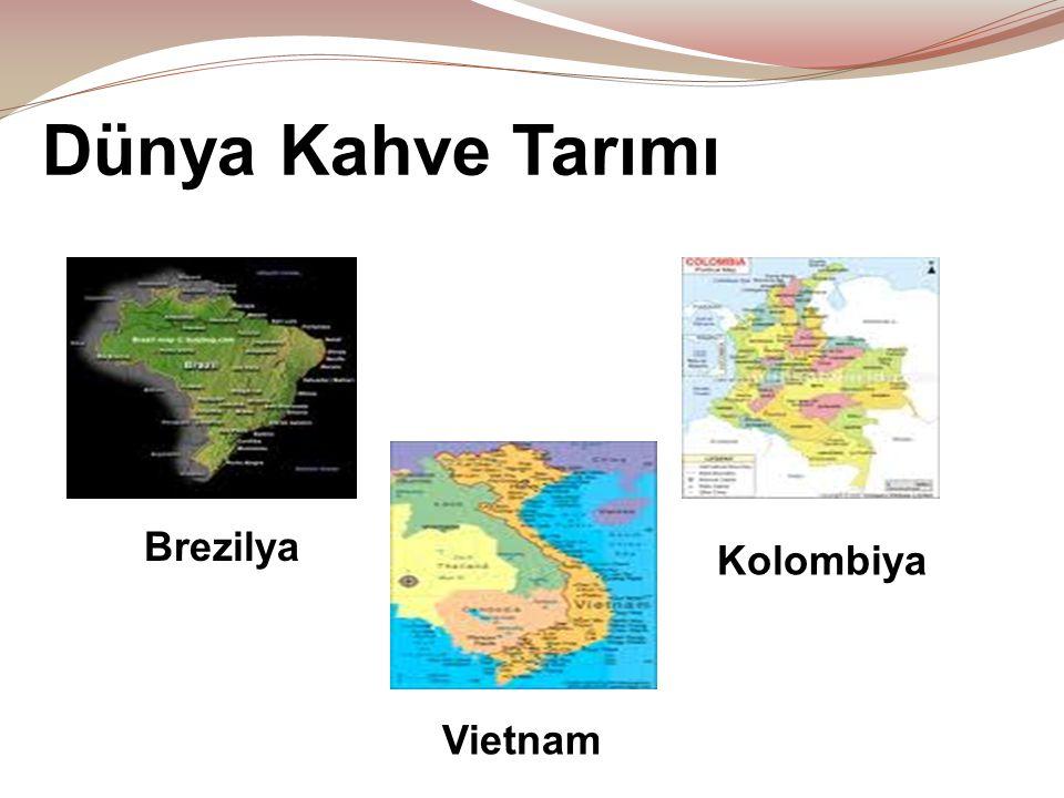 Dünya Kahve Tarımı Kolombiya Vietnam Brezilya