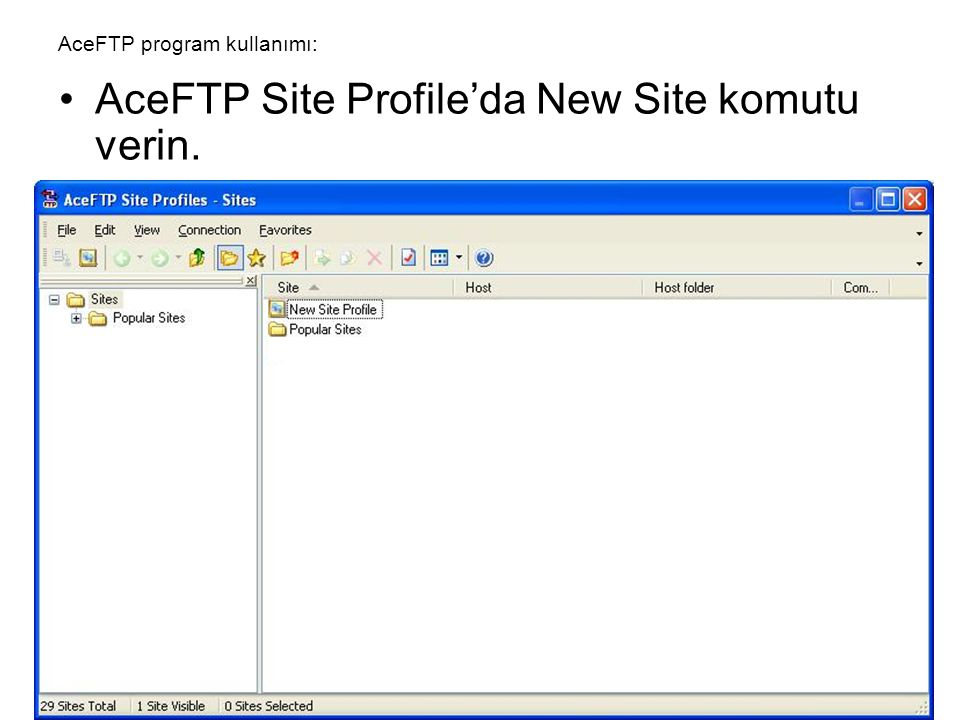 AceFTP program kullanımı: •AceFTP Site Profile'da New Site komutu verin.