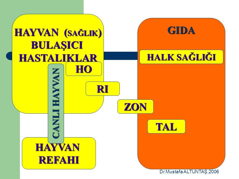 Dr.Mustafa ALTUNTAŞ,2006 CANLIHAYVANLARHAYVANSALGIDALAR HAYVAN SAĞLIĞI HALK SAĞLIĞI HAYVAN REFAHI HORİZONTAL ETKİLER